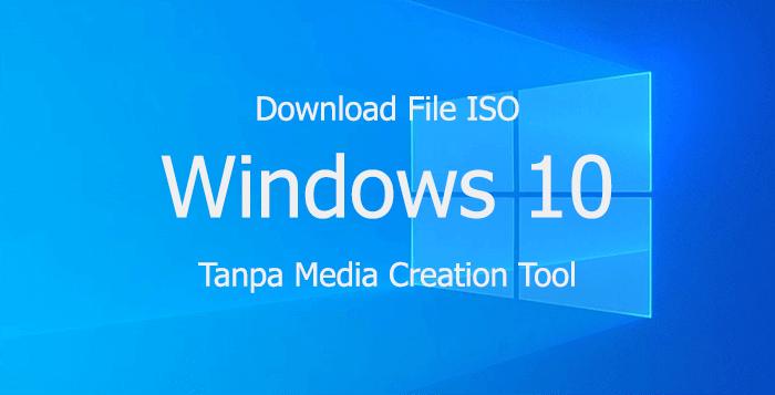 Download Windows 10 Pro Update 20H2 v2 ISO